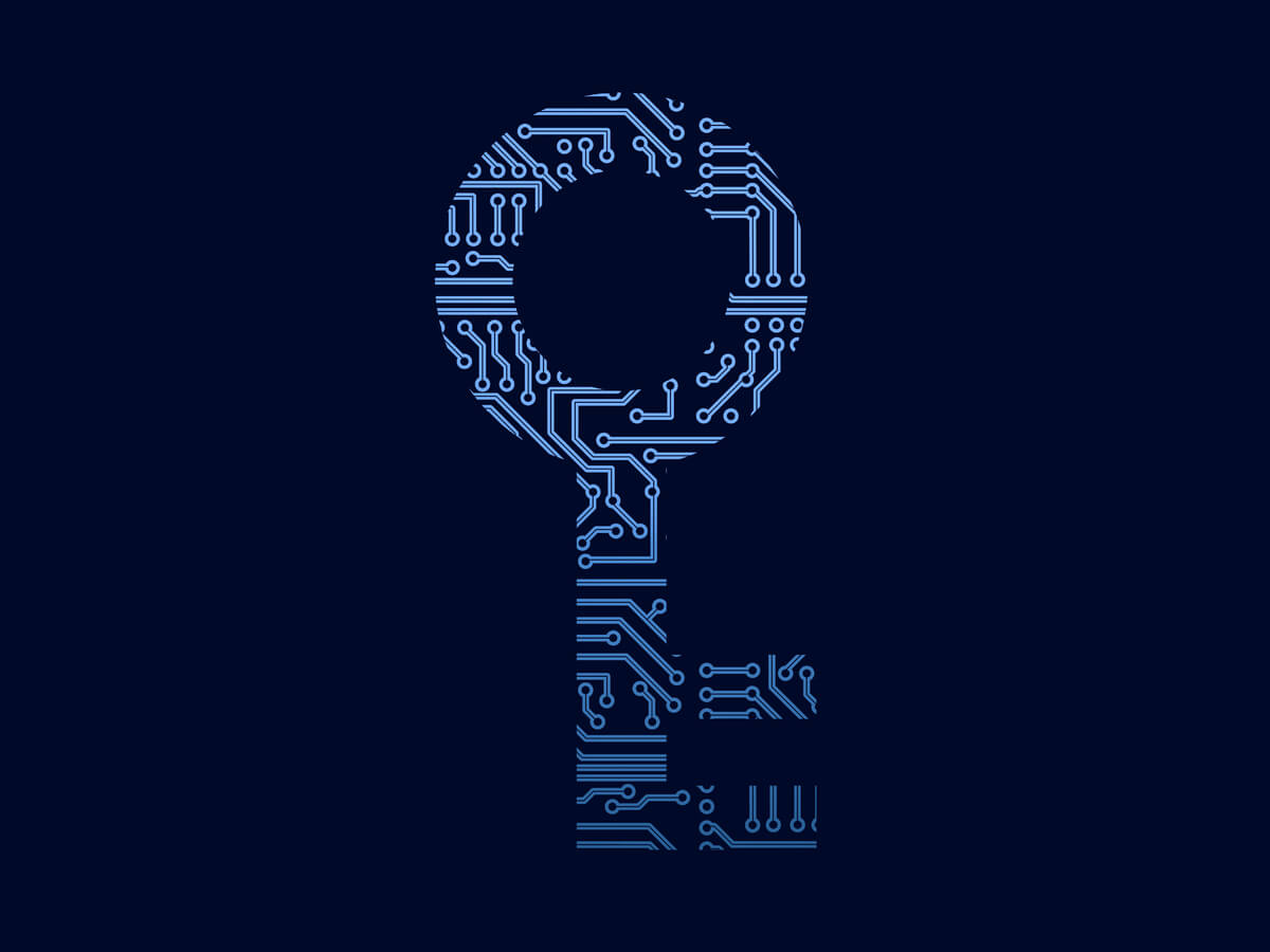 graphic of key with circuit board pattern to represent encryption key